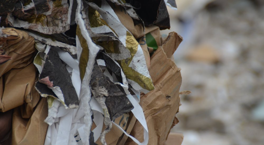 papier_schneider_recycling_0627